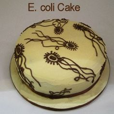 A Birthday Cake for A Microbiology Lover