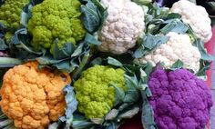 """Cauliflower is one of the most daily consumed important vegetables of commercial crops in the world. Basically cauliflower is grown with seeds and belongs to the family of """" Brassicaceae"""". The white part of flower is used for culinary purpose. Growing Cauliflower, Cauliflower Crust, Cauliflower Recipes, Roasted Cauliflower, Cauliflower Benefits, Cauliflower Popcorn, Purple Cauliflower, Superfood, Cauliflowers"""