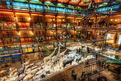 A Night at the Museum - - photo from #treyratcliff Trey Ratcliff at http://www.StuckInCustoms.com - all images Creative Commons Noncommercial