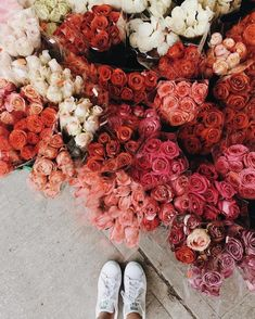 Beautiful pink, white and red market flowers My Flower, Fresh Flowers, Wild Flowers, Beautiful Flowers, Spring Flowers, Flower Aesthetic, Pink Aesthetic, Plants Are Friends, No Rain