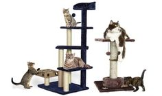 Groupon - Cat Tree Scratching Furniture with Toys. Groupon deal price: $22.99