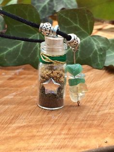 Money Wealth Prosperity Attracting Potion Spell Bottle Talisman Charm Necklace Wiccan Pagan Witch
