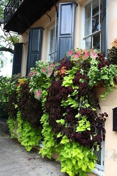 48 Delightful Cascading Planter Ideas For Small Space Gardening Delightful Cascading Planter Ideas For Small Space Gardening 34 Balcony Planters, Window Planters, Balcony Garden, Planter Boxes, Planter Ideas, Balcony Ideas, Window Box Flowers, Window Boxes, Flower Boxes