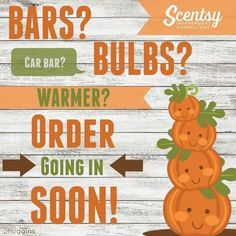 Need some Scentsy? Order going in soon!