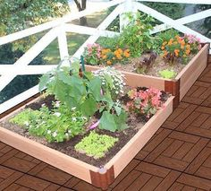 "Frame-It-All 4' X 8' X 12"" Terraced Garden 2"" series"