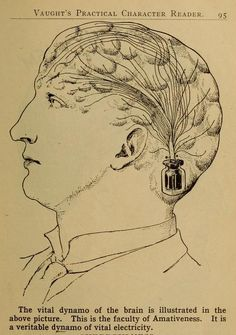 Illustrations from Vaught's Practical Character Reader, a book on phrenology by L. Vaught published in Astrological Elements, Phrenology Head, Pseudo Science, Face Reading, Vintage Medical, Shape Of You, Map Art, Character Illustration, Character Concept