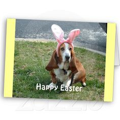 """Customizable Easter Basset card. You can add whatever text you'd like, inside and out. Measures 5"""" x 7"""" and comes with envelop. Sales benefit basset hound rescue, BROOD. (www.brood-va.org)"""