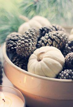 Mini white pumpkins and pinecones for fall centerpiece - Home Decor Ideas