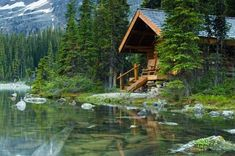 Dream Houses In The Woods