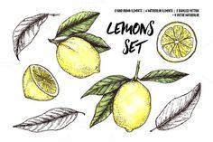 Hand drawn lemons set @creativework247