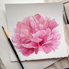 Come behind the scenes with me while I paint these beautiful peonies in watercolor. Watercolor Cards, Watercolor Illustration, Watercolour Painting, Watercolor Flowers, Painting & Drawing, Guache, Inspiration Art, Watercolour Tutorials, Small Paintings
