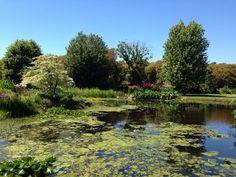 @TalbotHammond - Parc Botanique de Cornouaille - a little gem in Combrit. #ForAnyone