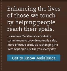 Melaleuca