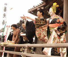 20101122_kikuhina23
