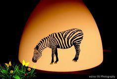 IKEA MELODI Pendant lamp #2