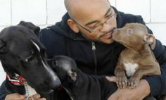Kind-Hearted New Yorker Cashes in 401k to Rescue Dogs