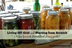 Living off-grid and Starting a Homestead from Scratch.  Homestead Honey's top posts.
