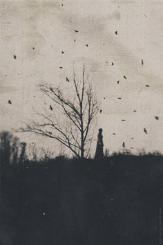 Natalia Drepina, contemporary Russian photographer
