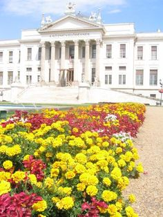 Hungary, Museum, Mansions, House Styles, Building, Travel, Viajes, Manor Houses, Villas
