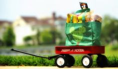 Tips for Walt Disney World Grocery Delivery Disney World Vacation Planning, Orlando Vacation, Disney Planning, Disney World Trip, Disney Tips, Disney World Resorts, Disney Magic, Dining At Disney World, Disney Dining Plan