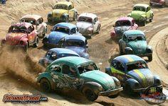 V W Bug Racing....
