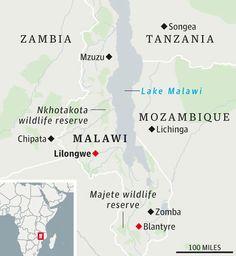 Malawi -parasaber dónde tengo que ir a buscar a @America Arias :-)