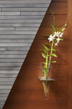 Kona Residence / Belzberg Architects (17)