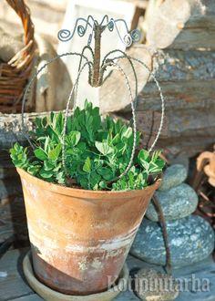 Rautalangasta taivutettu tuki on kaunis, vaikka tuoksuherneet eivät siihen vielä ylläkään. www.kotipuutarha.fi Garden Ideas, Planter Pots, Gardening, Outdoor, Outdoors, Lawn And Garden, Landscaping Ideas, Outdoor Games, Backyard Ideas