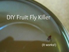 With summer inevitably comes an explosion of fruit flies. This week, it seemed like I could walk into the kitchen, clap at random and wou. Diy Cleaning Products, Cleaning Hacks, Household Products, Fruit Fly Killer, Beautiful Home Gardens, Planting Plan, Fruit Flies, Green Cleaning, Pest Control