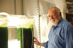 Great Ideas on Energy: Artificial Photosynthesis, Algal Fuel, Hybrid Ships
