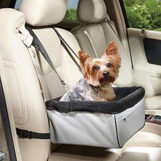 Jespet Travel Animals Pet Booster Seat Dog Cat Small Animal Lookout Car Carrier