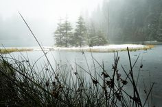 """Early winter dream - single exposure, glacier lake """"vrbicke pleso"""" in low tatras national park, slovakia. Free Stock Photos, Free Photos, Glacier Lake, Carpathian Mountains, Media Images, Eastern Europe, Grass, National Parks"""