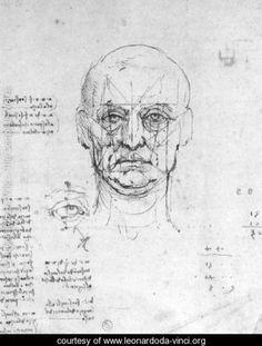 Study On The Proportions Of Head And Eyes - Leonardo Da Vinci - www.leonardoda-vinci.org