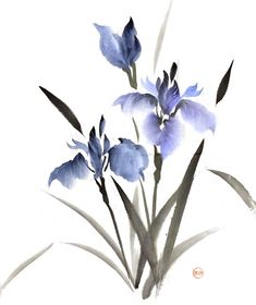 [Sumie] Irises by bsshka Japanese Watercolor, Japanese Painting, Chinese Painting, Chinese Art, Japanese Art, Chinese Brush, Watercolor Print, Watercolor Flowers, Watercolor Paintings
