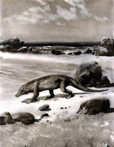 "Protosuchus Illustration by Zdenek Burian, 1962  ""Prehistoric Sea Monsters,"" 1964"