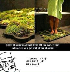 How To Make Your Own Organic Moss Shower Mat ○●○ These mats are available for about 100 to 200 dollars if you were to buy them pre-made. But, that's a little expensive, so here is how to make your own! Moss Bath Mats, Make Your Own, Make It Yourself, How To Make, Ideas Paso A Paso, Home Improvement, Home And Garden, Garden Fun, Diy Crafts