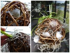 Offer materials for nesting birds with this simple garden craft. Use pre-made grapevine balls, add nesting materials, and hang for birds to find.