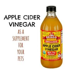 Did you know that Apple Cider Vinegar makes a wonderful supplement for your pets? Learn how to use it in this post from Hybrid Rasta Mama.