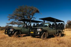 Game drive at the Private Game Reserve at Omaanda Hotels, Private Games, Game Reserve, Honeymoon Destinations, Continents, West Coast, Savannah Chat, South Africa, Europe