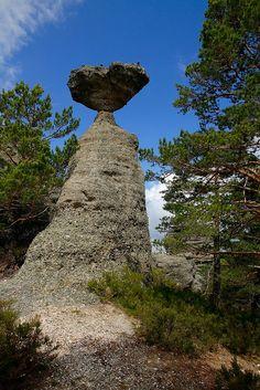 Castroviejo, Duruelo de la Sierra  #Pinares #Soria#Spain
