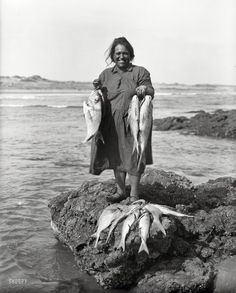 """A Good Catch: 1910 """"Maori woman with a catch of fish on the Northland coast."""" Glass negative by Arthur James Northwood"""