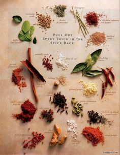 'Pull Out Everu Trick in the Spice Rack' -Herbs & Spices by johanzammit: Click through for an informative article. Beautiful image from a magazine ad? #Infographic #Illustration #Spices via www.bittopper.com/post.php?id=503284248528c00a37bd4b6.59678939