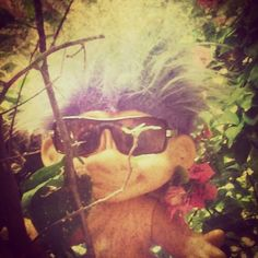 we will upload a few times a week posts with 3-5 photos. In the photos hiding a troll doll that you need to find.