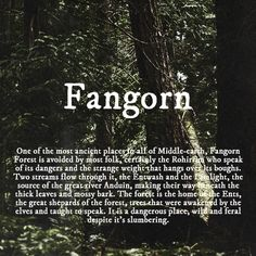 Fangorn Wish it was my backyard! Don't worry, I'd build a fence ;)