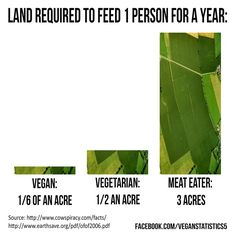 Land Required to feed a vegan vs vegetarian vs Meat Eater. - sharing is caring how much land do you use