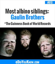 Most albino siblings: Gaulin Brothers *The Guinness Book of World Records Guinness Book, Albino, Lifehacks, Siblings, Funny Shit, Did You Know, Einstein, Fun Facts, Brother