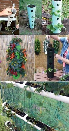 Make a vertical garden or hanging herb planter with a piece of PVC pipe - Modern