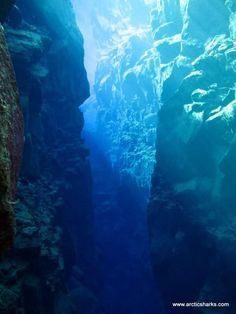 Scuba diving between 2 continents - Silfra Crack in Iceland allows you to dive between Europe & North America Silfra is a unique phenomenon on this planet. The visibility in Silfra exceeds 100 meters and divers and snorkelers are diving and floating in between the American and Eurasian continents. They can actually touch both continents at the same time.