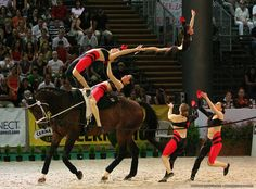 Amazing Vaulting competition!