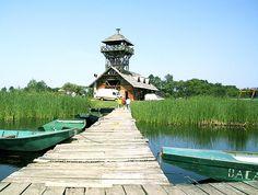 Zasavica The Special Nature Reserve Zasavica in Serbia